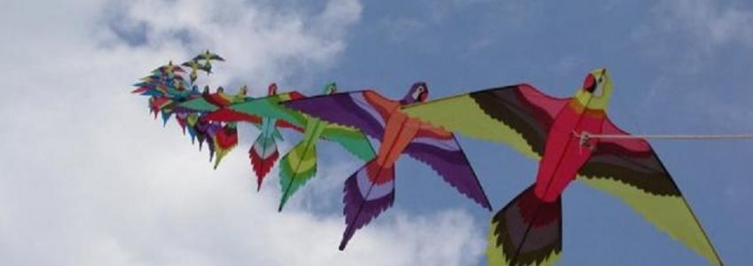 Tornano i cieli colorati dagli aquiloni