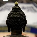 Festival dell'Oriente e delle Arti Marziali